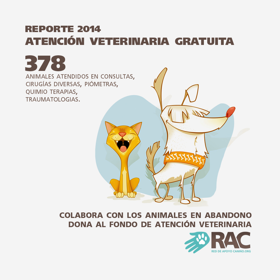 Atencion veterinaria 2014 detalle
