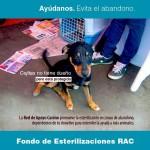 FondoRAC