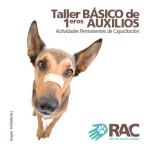 Taller Básico de Primeros Auxilios para mascotas