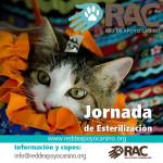 Organiza una jornada en tu comunidad y ayuda a erradicar el abandono: http://apoyocanino.wufoo.com/forms/z7x1q9/ . Regala calidad de vida. Esteriliza.
