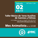 UCAB TALLER BASICO 02 ABR