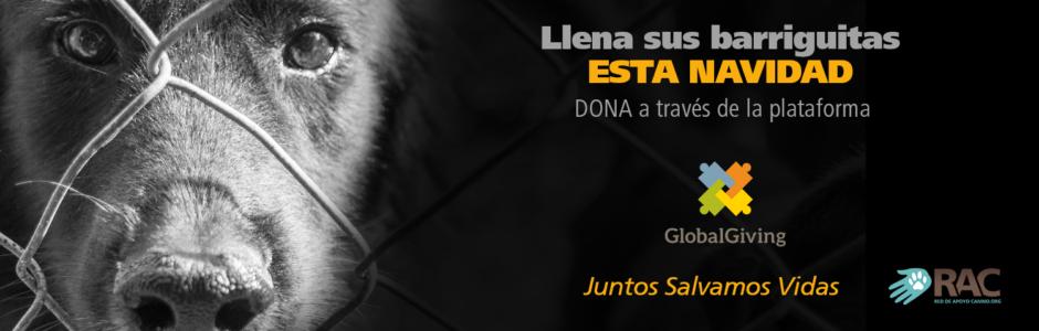 Global Giving Red de Apoyo Canino